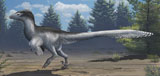 EMW100006P © Stocktrek Images, Inc. A mid-sized Cretaceous China deinonychosaur.