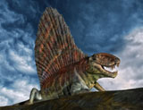 PHB600015P © Stocktrek Images, Inc. Dimetrodon was an extinct genus of synapsid from th Early Permian period.
