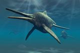 PHB600030P © Stocktrek Images, Inc. Shonisaurus was a genus of ichthyosaur from the Triassic period.