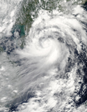 STK203396S