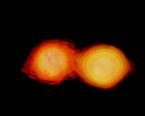 STK204383S © Stocktrek Images, Inc. A pair of neutron stars colliding, merging, and forming a black hole.