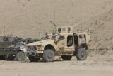 TMO100336M