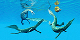 CFR200876P © Stocktrek Images, Inc. Mesosaurus reptiles chase after an ammonite.