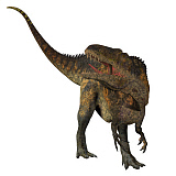 CFR200882P © Stocktrek Images, Inc. Acrocanthosaurus dinosaur on white background.