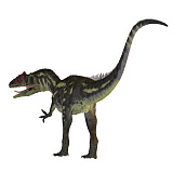 CFR200885P © Stocktrek Images, Inc. Allosaurus dinosaur on white background.