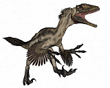 EDV600405P © Stocktrek Images, Inc. Deinonychus dinosaur roaring, isolated on white background.
