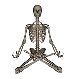 EDV700047H © Stocktrek Images, Inc. Front view of human skeleton meditation.