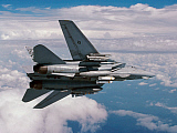 DBR100032M © Stocktrek Images, Inc. An F-14A Tomcat returning form an Operation Southern Watch mission.