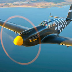 CLASSIC WARBIRDS Stock Photos and Pictures