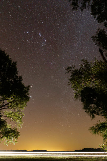 ARG100074S © Stocktrek Images, Inc. The Orion constellation between trees, Buenos Aires, Argentina.