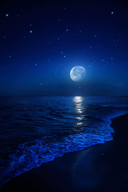 EVK200016S © Stocktrek Images, Inc. Tranquil ocean at night against starry sky and moon.