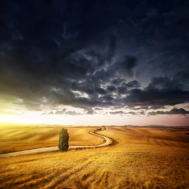 EVK200225S © Stocktrek Images, Inc. A country road in field at sunset against moody sky, Tuscany, Italy.