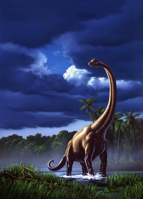 JRY600001P © Stocktrek Images, Inc. A startled Brachiosaurus splashes through a swamp against a stormy sky.
