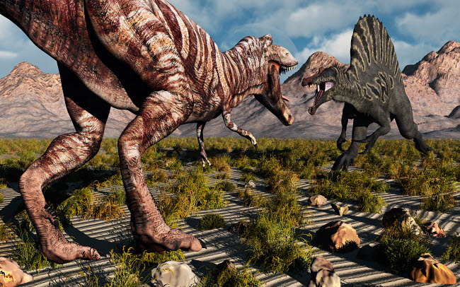 MAS100227P © Stocktrek Images, Inc. A confrontation between a T. Rex and a Spinosaurus dinosaur.
