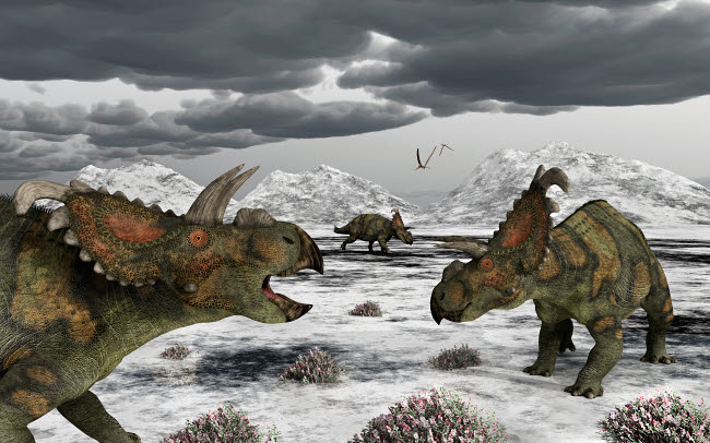 MAS100926P © Stocktrek Images, Inc. Albertaceratops during their winter migration.