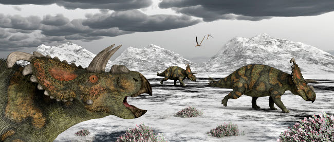 MAS100927P © Stocktrek Images, Inc. Albertaceratops during their winter migration.