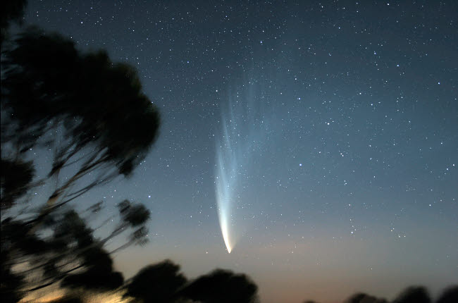 PHA100001S © Stocktrek Images, Inc. Comet McNaught P1