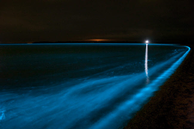 PHA100016S © Stocktrek Images, Inc. Bioluminescence in waves in the Gippsland Lakes, Victoria, Australia.