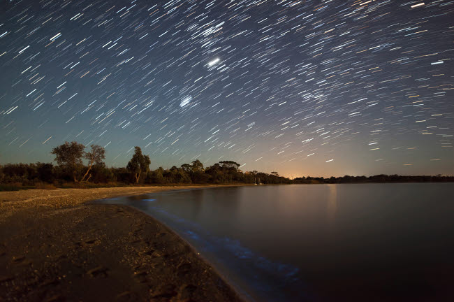 PHA100054S © Stocktrek Images, Inc. Star trails and bioluminescence, Gippsland Lakes, Australia.