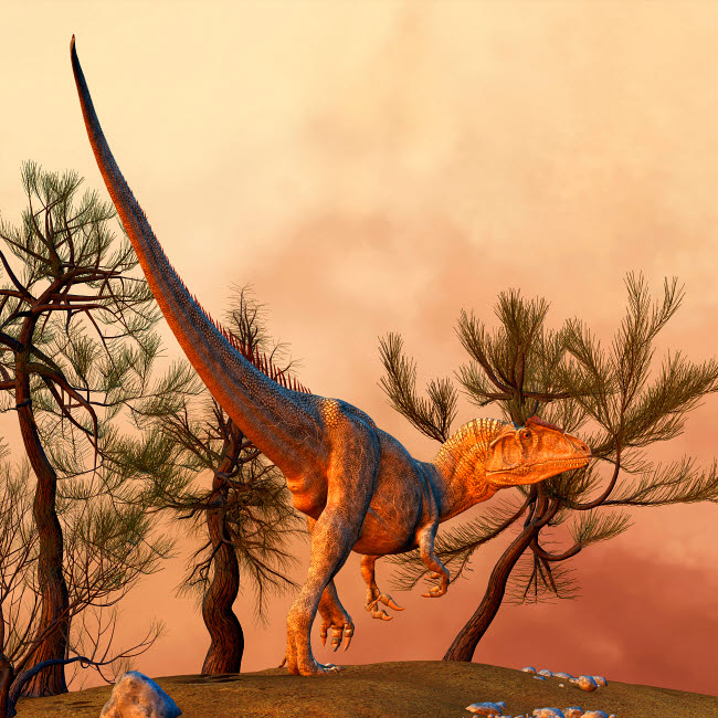 PHB600004P © Stocktrek Images, Inc. Allosaurus, a large theropod dinosaur from the late Jurassic period.
