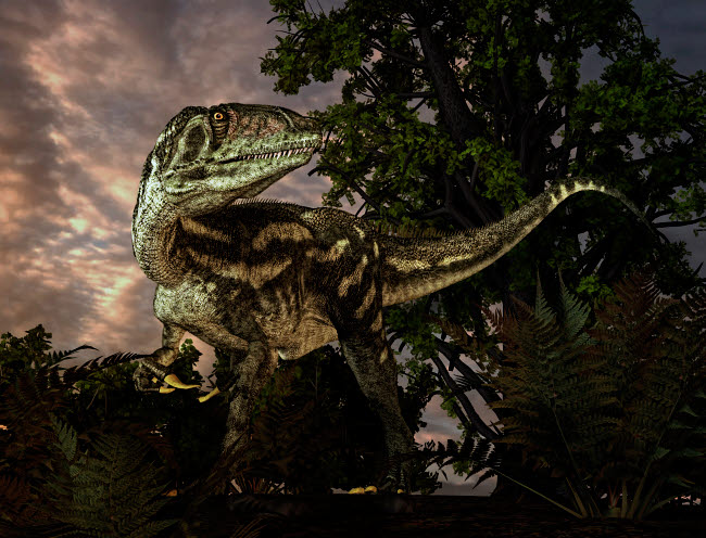 PHB600006P © Stocktrek Images, Inc. Australovenator was a theropod dinosaur from the Early Cretaceous Period.