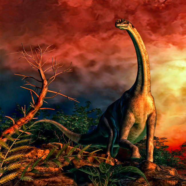 PHB600019P © Stocktrek Images, Inc. Jobaria was a sauropod dinosaur that lived during the middle Jurassic Period.