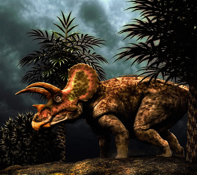 PHB600036P © Stocktrek Images, Inc. Triceratops was a herbivorous dinosaur from the Cretaceous period.