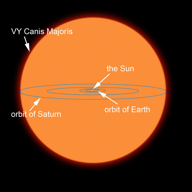 RMR100036S © Stocktrek Images, Inc. A diagram comparing the Sun to VY Canis Majoris.