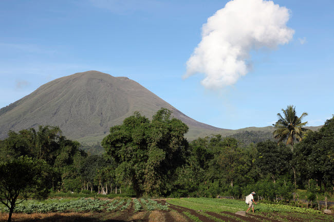 RRS300541S © Stocktrek Images, Inc. Agriculture near Kinilow town at foot of Lokon-Empung volcano, Indonesia.