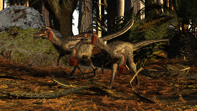 ADR600095P © Stocktrek Images, Inc. A pair of Buitreraptor dromaeosaurs of South America.