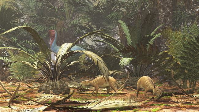 ADR600097P © Stocktrek Images, Inc. Propalaeotherium grazing on ferns while a Gastornis bird roams in background.