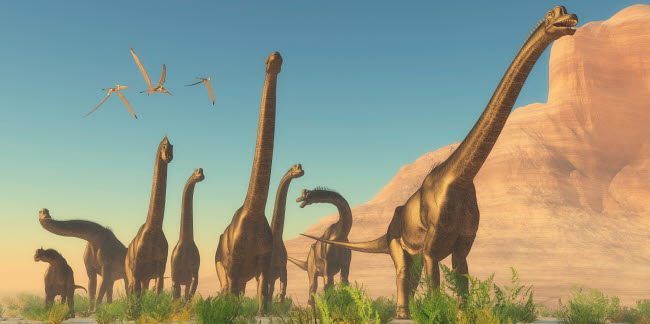 CFR200426P © Stocktrek Images, Inc. A herd of Brachiosaurus travel near a canyon mountain.
