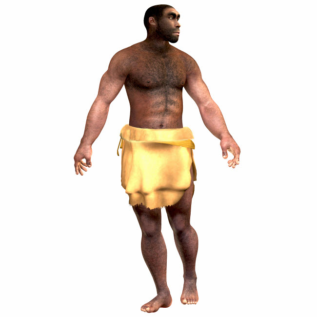 CFR200534P © Stocktrek Images, Inc. Male homo erectus wearing a loin cloth.