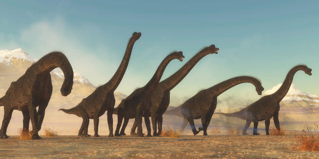 CFR200873P © Stocktrek Images, Inc. A Brachiosaurus dinosaur herd moving through a dry desert area.