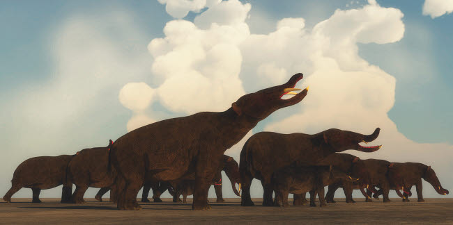 CFR200877P © Stocktrek Images, Inc. A Platybelodon herd gathers on the plains of Africa.