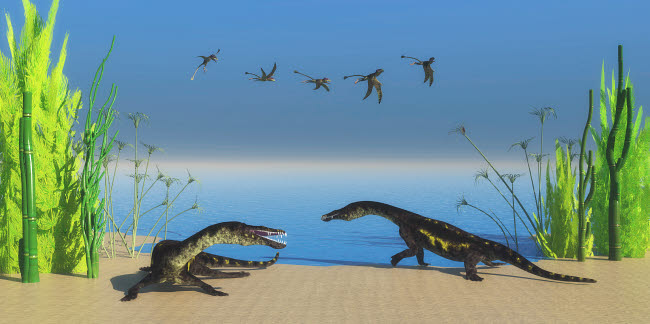 CFR200968P © Stocktrek Images, Inc. Nothosaurus dinosaurs on a Triassic beach with a flock of Peteinosaurus flyinga above.