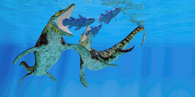 CFR601088P © Stocktrek Images, Inc. Coelacanth fish become prey to a pair of Tylosaurus marine reptiles.