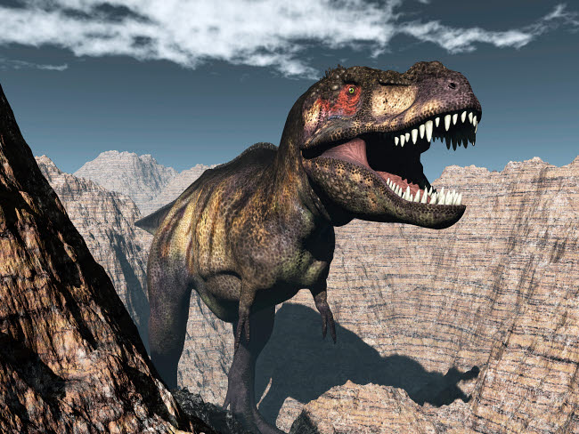 EDV600344P © Stocktrek Images, Inc. Tyrannosaurus rex roaring in a canyon.