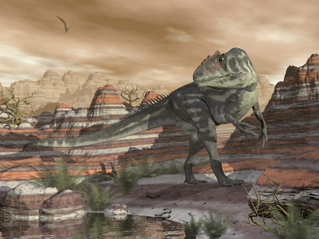 EDV600414P © Stocktrek Images, Inc. Allosaurus dinosaur walking in the desert canyon by sunset.