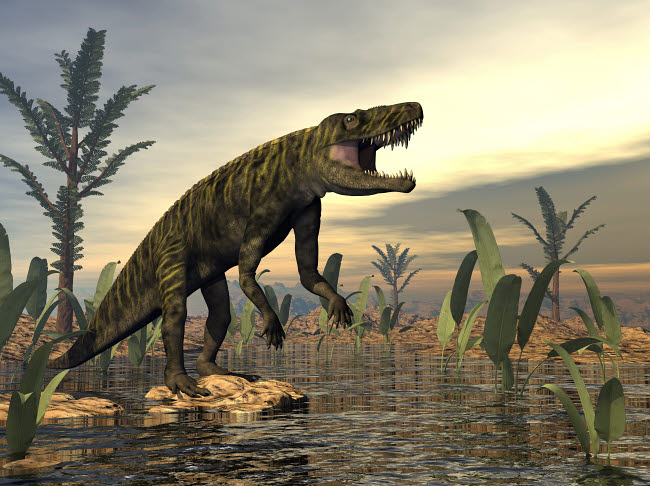 EDV600456P © Stocktrek Images, Inc. Batrachotomus dinosaur roaring by a swamp.