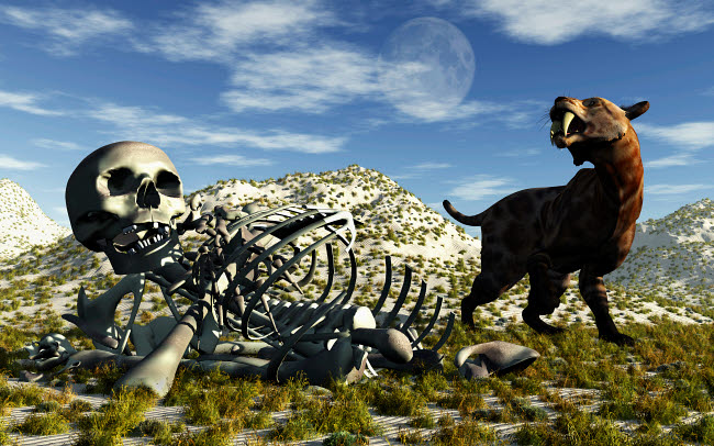 MAS600030P © Stocktrek Images, Inc. A Smilodon saber-toothed cat discovers human remains.