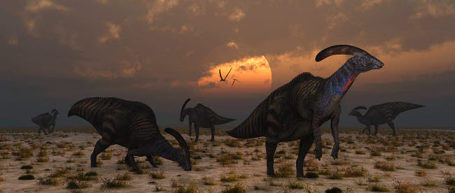 MAS600072P © Stocktrek Images, Inc. A herd of Parasaurolophus dinosaurs at dawn.