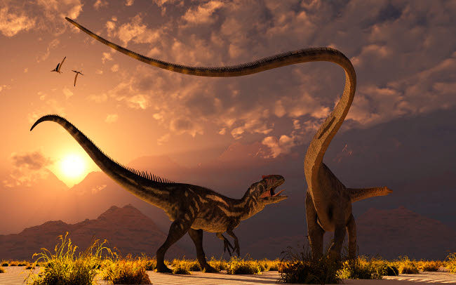 MAS600077P © Stocktrek Images, Inc. An Allosaurus in a deadly battle with a Diplodocus dinosaur at dawn.