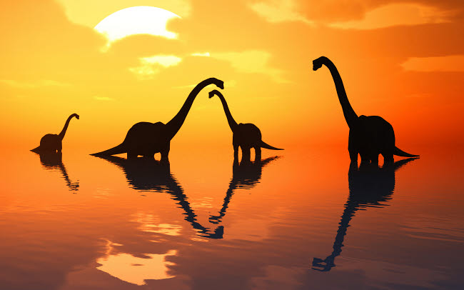 MAS600118P © Stocktrek Images, Inc. The silhouetted shapes of sauropod dinosaurs at the start of a prehistoric day.