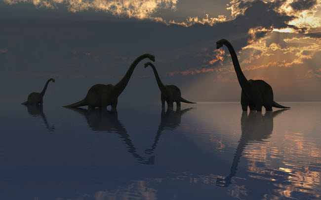 MAS600119P © Stocktrek Images, Inc. The silhouetted shapes of sauropod dinosaurs at the start of a prehistoric day.