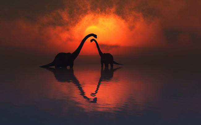 MAS600120P © Stocktrek Images, Inc. The silhouetted shapes of sauropod dinosaurs at the end of a prehistoric day.