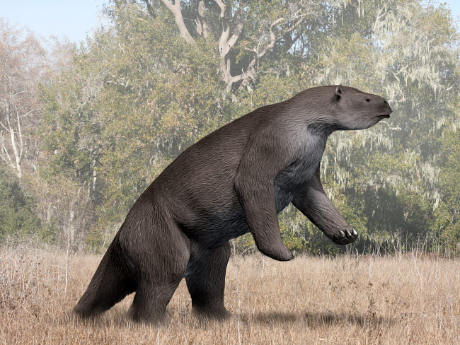 NBT600234P © Stocktrek Images, Inc. Megatherium animal from the Pleistocene epoch of South America.