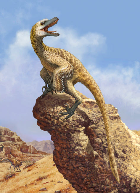 SKR100181P © Stocktrek Images, Inc. A Velociraptor screams loudly while perched on top of a rock formation.