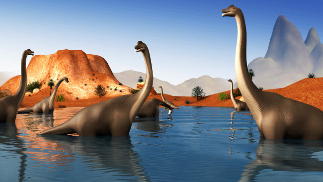 STK600157P © Stocktrek Images, Inc. Brachiosaurus dinosaurs grazing in a prehistoric lake.
