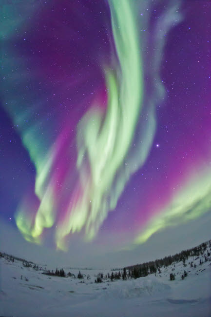 ADY200208S © Stocktrek Images, Inc. The Northern Lights in Churchill, Manitoba, Canada.